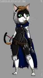 Chibi Fantasy Kitty