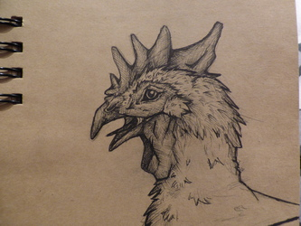 Random Cock
