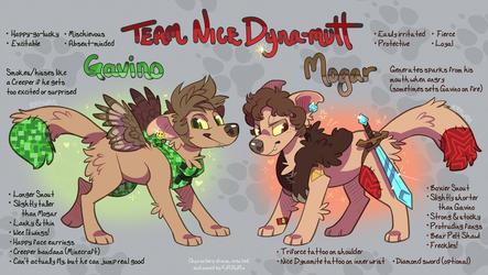 Team Nice Dyna-mutt