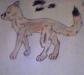 My little Brothers Learning to Draw ferals ^w^