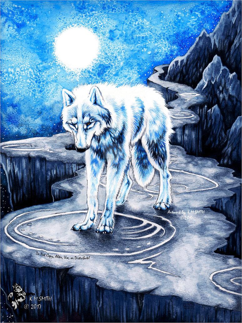 картинки настоящего волка с магией