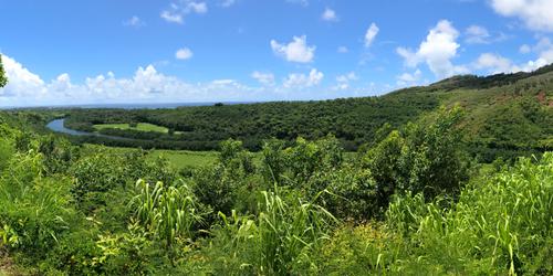 Konohiki Stream Panorama