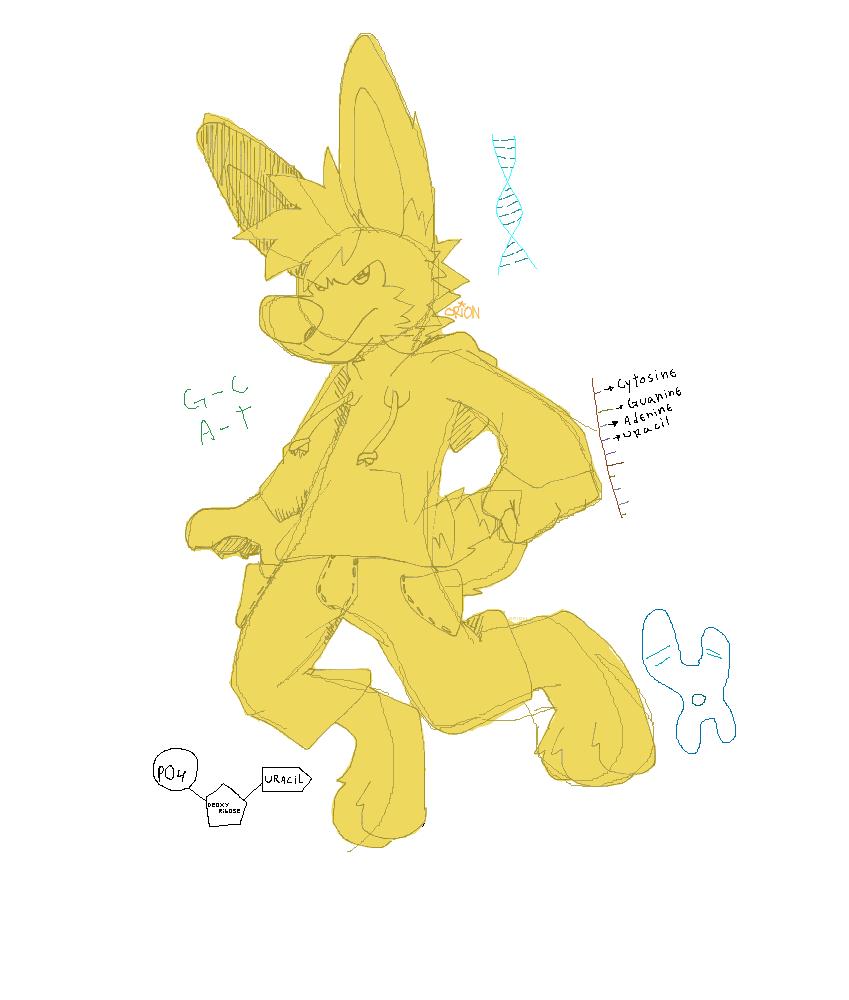 Some Hyena Bunny Thing