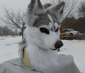 Realistic Husky(FOR SALE)