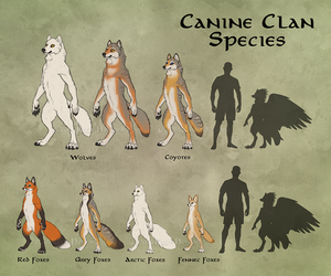 Canine Clans Overview
