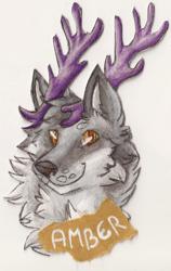 Amber Badge