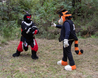 Furry Ironfest Promo 2019: Sword Fighting