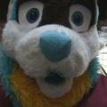 Saturday Fursuit Madness: Noseboops