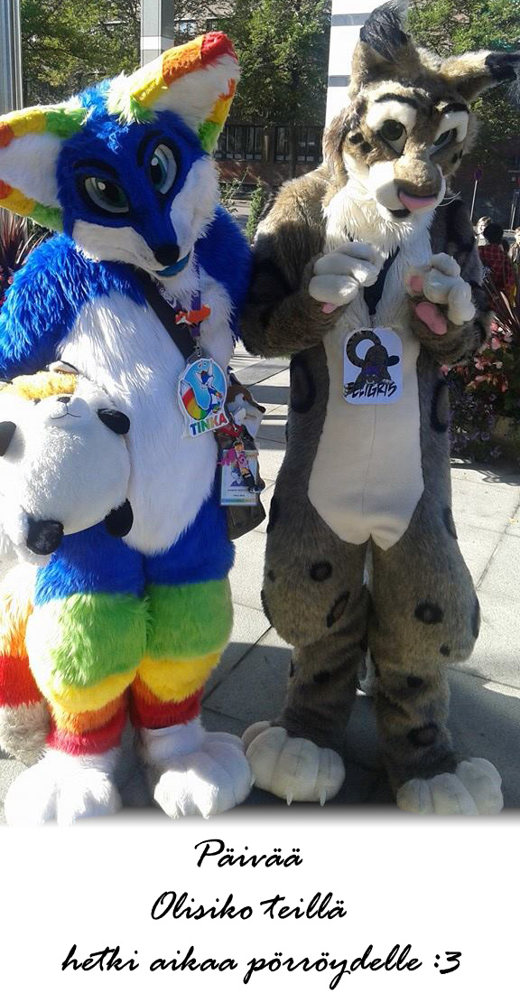 Tracon 9 fursuiting in 2014