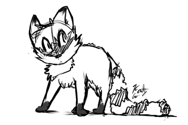 Kaittycat - I AM A RACCOON