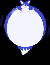 David is the biggest balloonfox