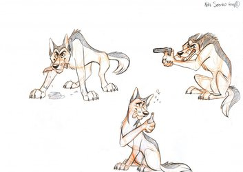 Muzzle Character Poses