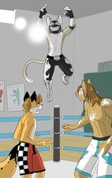 Luchador Landing