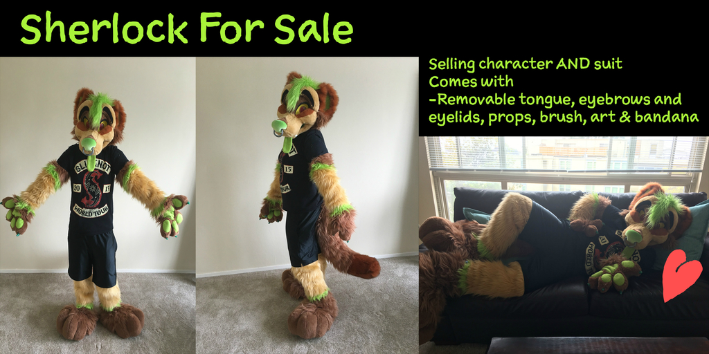 Most recent image: MFL Sherlock Partial for Sale