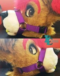 Purple Muzzle