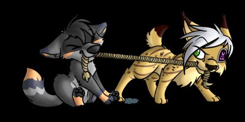 War of Cuteness