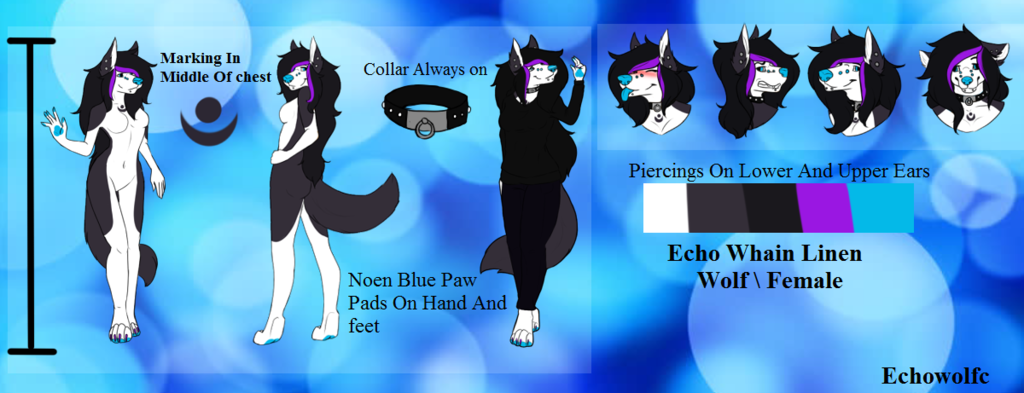 echo whain linen ref sheet updated