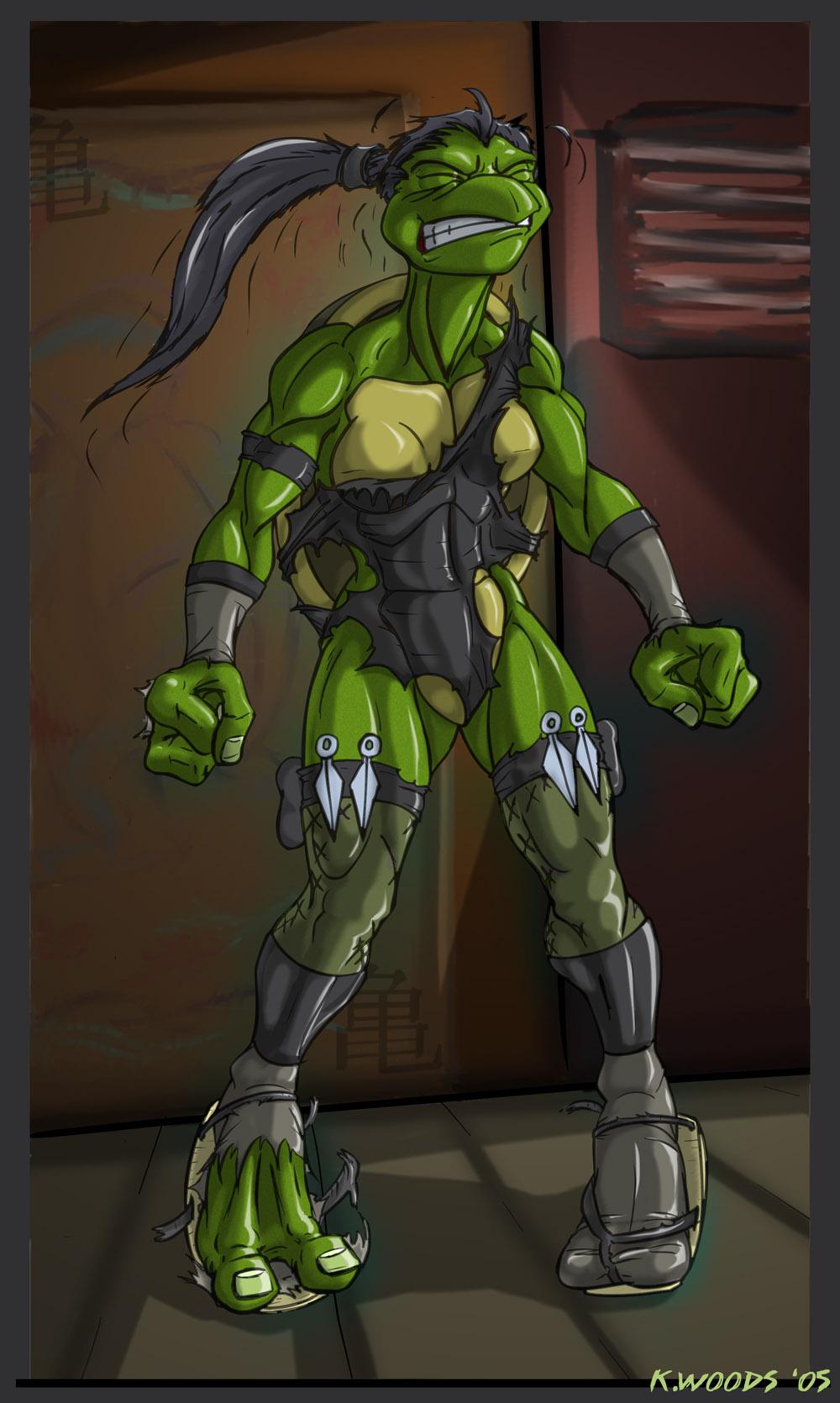 Ninja Turtle TF - by Blackrat