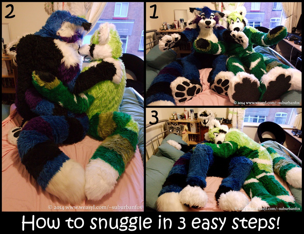 Most recent image: How to snuggle
