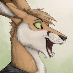 Renegade Kangaroo Speedpaint Portrait