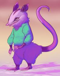 80s opossum
