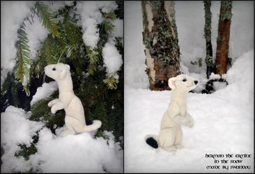 Herman in the Snow