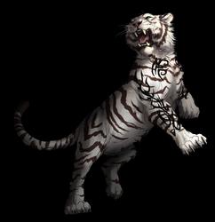 TigerTau-commission collab-