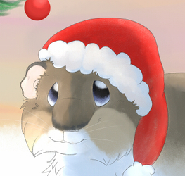 Merry Christmas and happy new year ^^