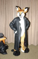 Kendall Fursuit (With trenchcoat)