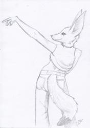 Female fennec posing - sketch