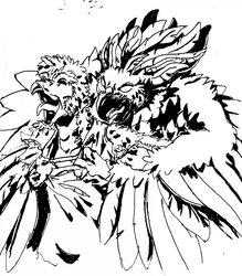 Werehawk attack!