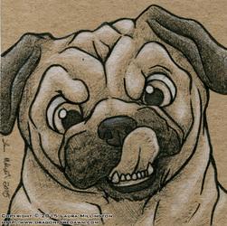 Pug Nose Lick