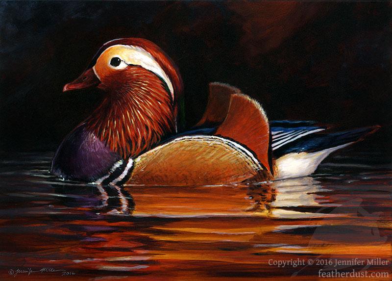 Mandarin Duck I