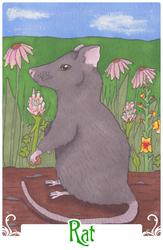 Rat (2014)