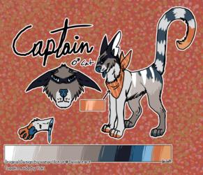 [P] Captain
