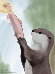 .:Feed the Otter:.