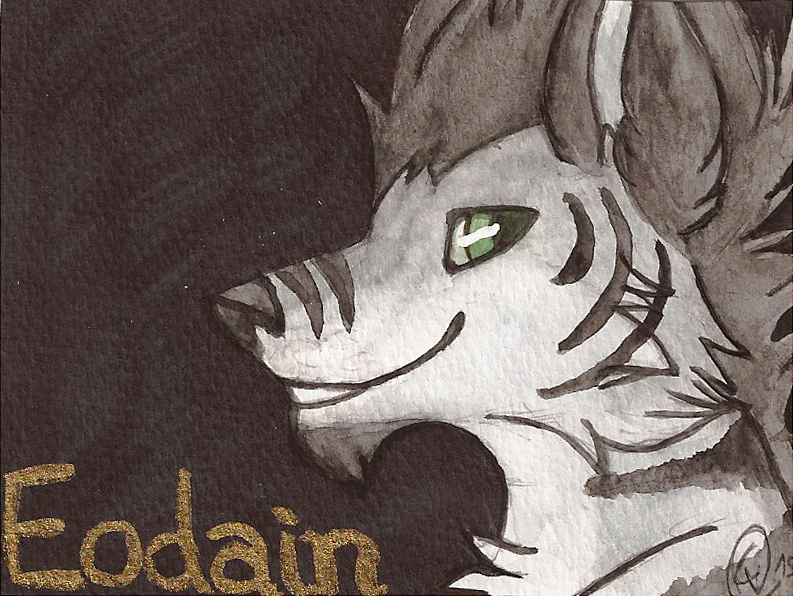 Badge for Eodain