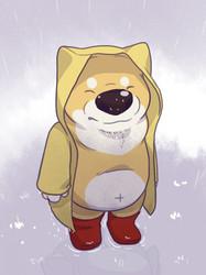 rainy day for a shibe