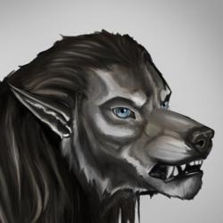 2016.42 Hairwolves