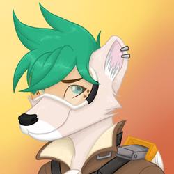 Overwatch Portrait: Kailyn