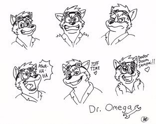 Doctor Omega Expression Sheet