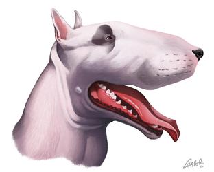 English Bull Terrier Caricature