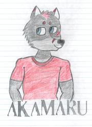 My Bro Akamaru