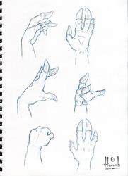 Cervine Hand Hooves