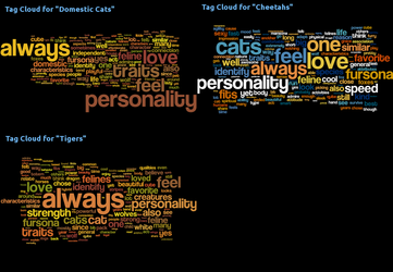 Word Cloud - Why are you a feline?