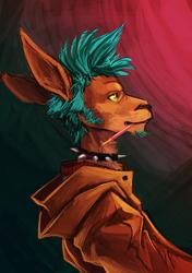 Digital Practice - Kangaroo Dude
