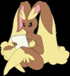 Lopunny's Sketchbook