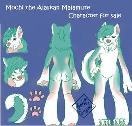 Mochi Malamute Adoptable