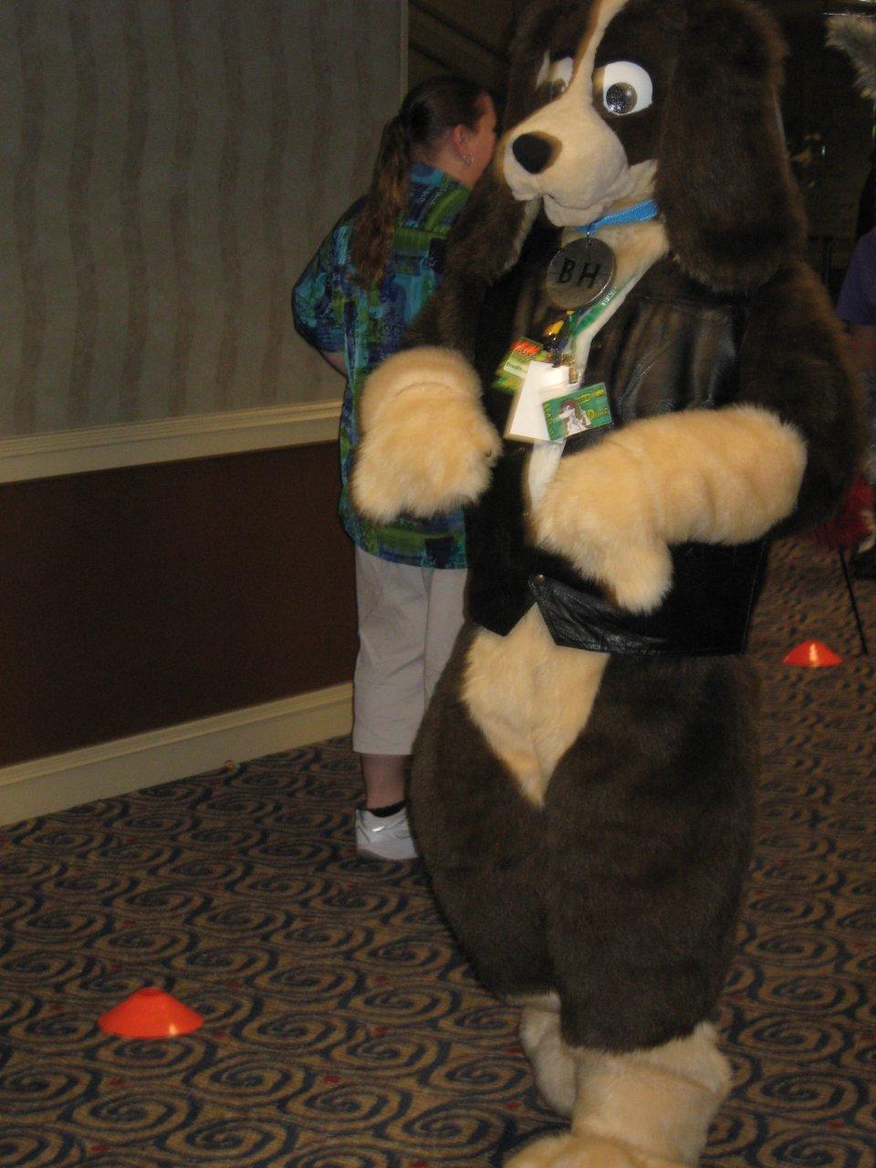 FWA 2012 - Day 2 - Fursuit Parade - Bradhound