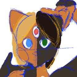 2 face cat
